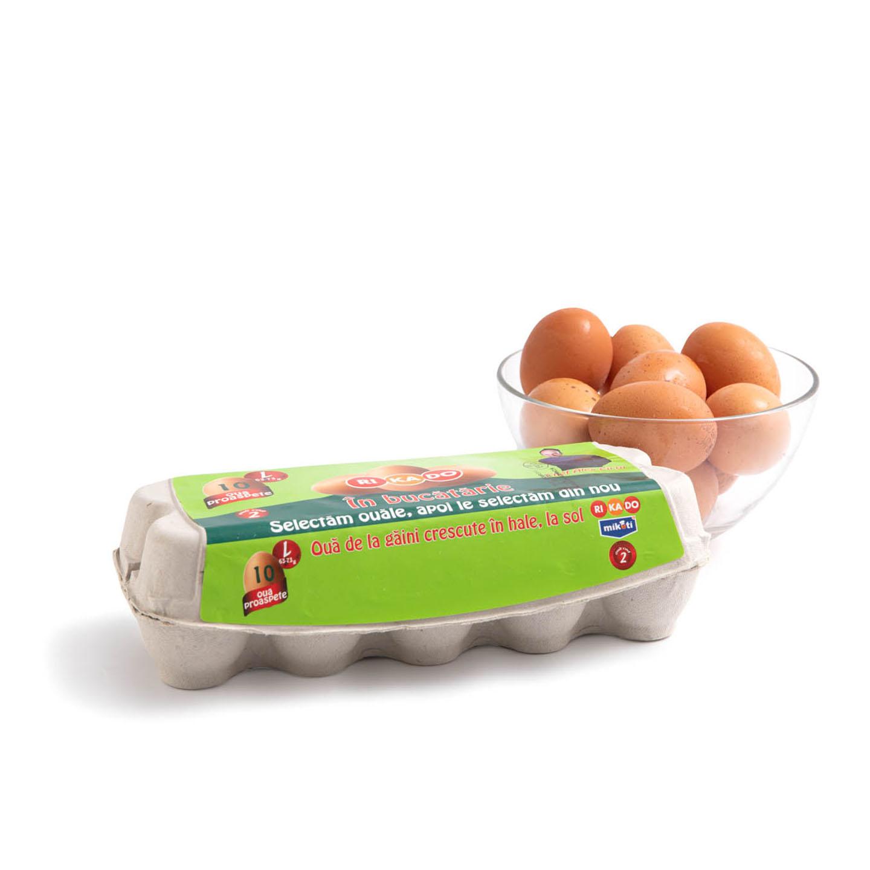 Ouă mărimea L Rikado, 10 bucăți
